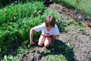 Helping Your Kids Learn About Investing Through Gardening